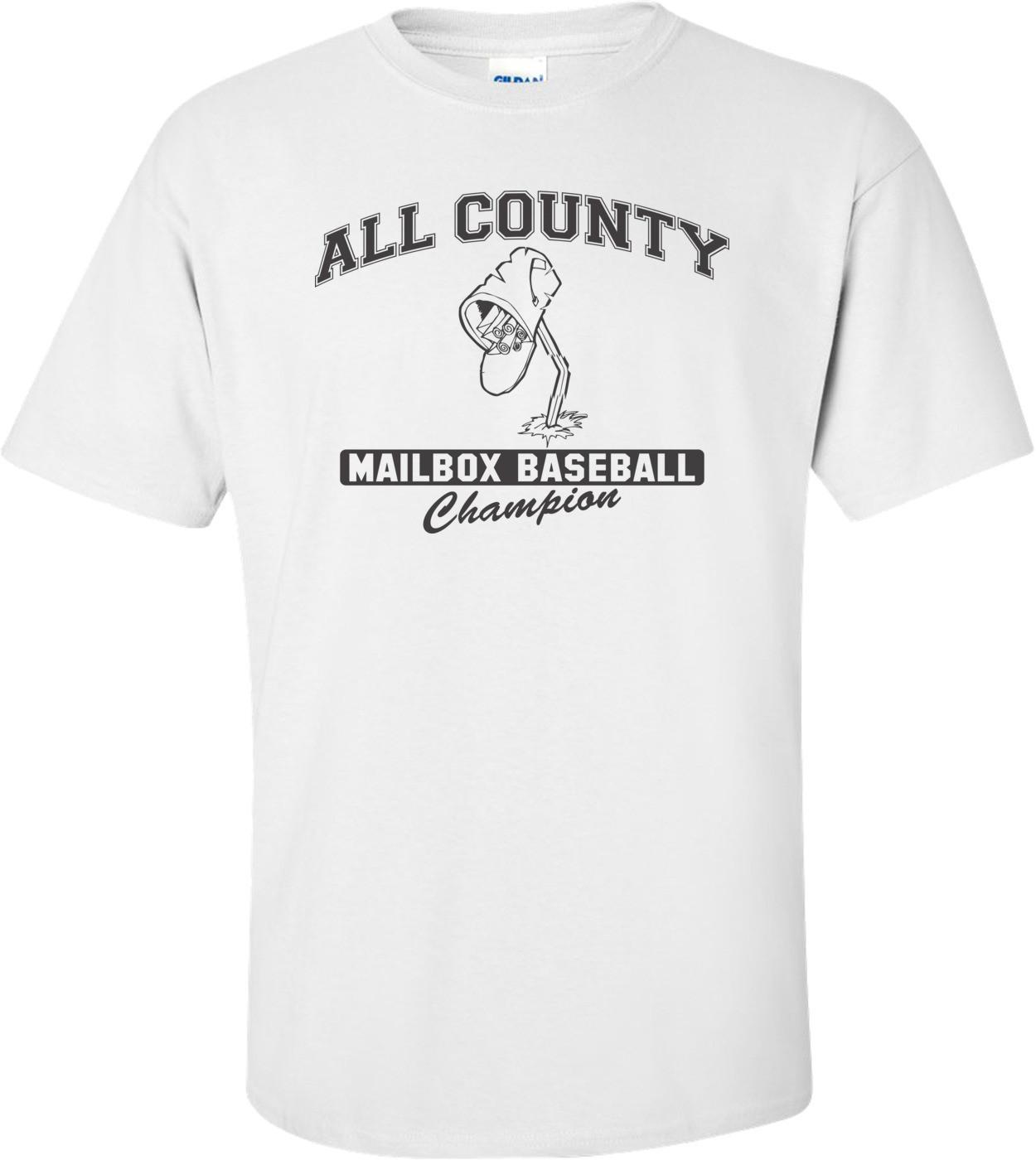 All County Mailbox Baseball Champion