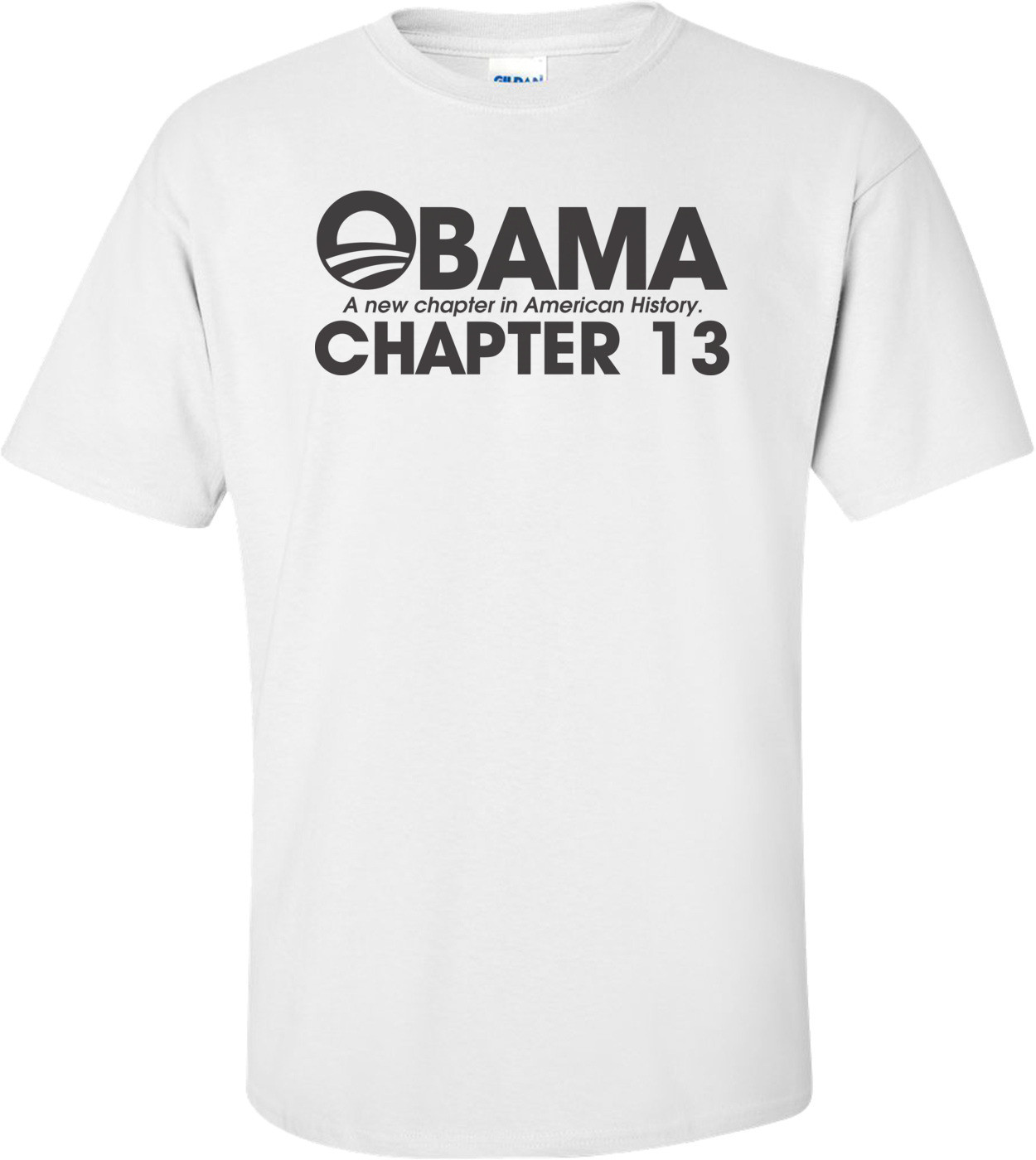 Obama A New Chapter In American History Chapter 13 Anti Obama