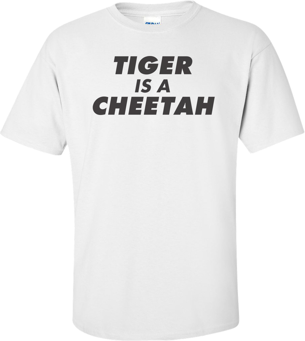 Tiger Is A Cheetah