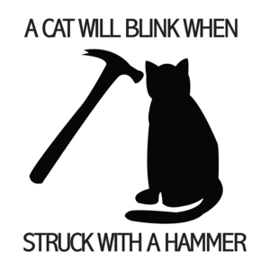 A Cat Will Blink When Struck With A Hammer