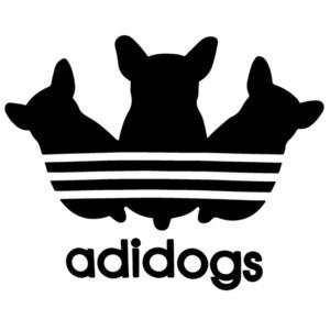 Adidogs - Funny Adidas Parody