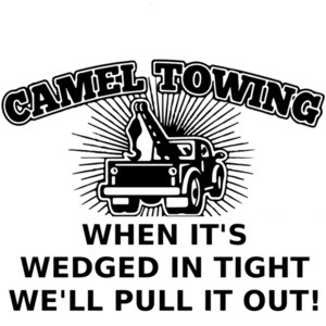 Camel Towing - When it's wedged in tight we'll pull you out!