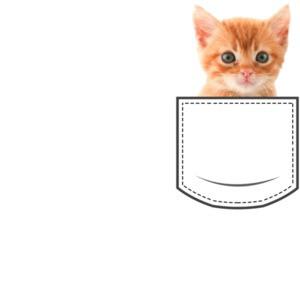 Cat in pocket - pocket pet
