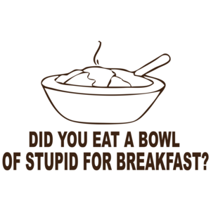 Did You Eat A Bowl Of Stupid For Breakfast Funny