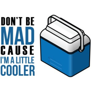 Don't be mad cause i'm a little cooler