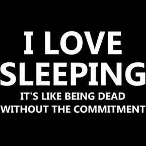 I love sleeping it's like being dead without the commitment - funny sarcastic