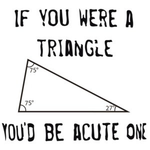 If you were a triangle you'd be acute one. Funny