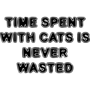 TIME SPENT WITH CATS IS NEVER WASTED Funny