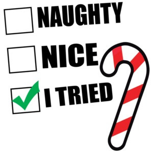 Naughty. Nice. I Tried. Funny Christmas