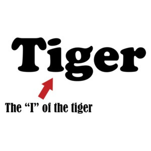The I Of The Tiger