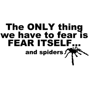 The Only Thing We Have To Fear Is Fear Itself And Spiders